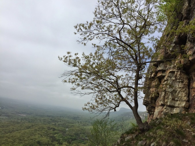 I love how the mood of the Gunks varies so much.