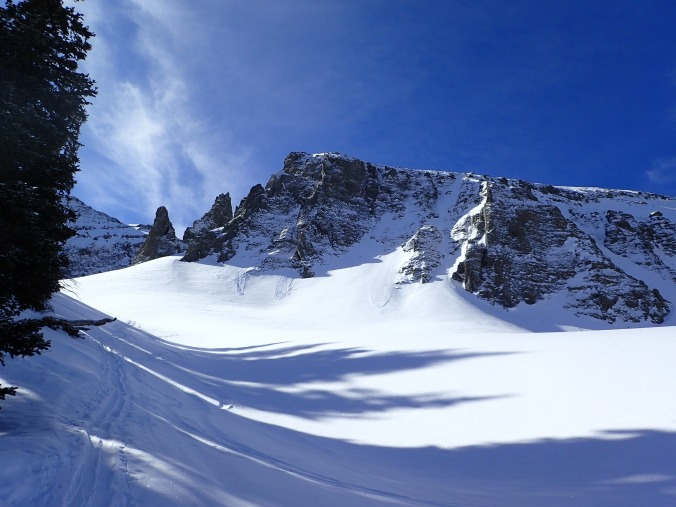 So many skiing options.