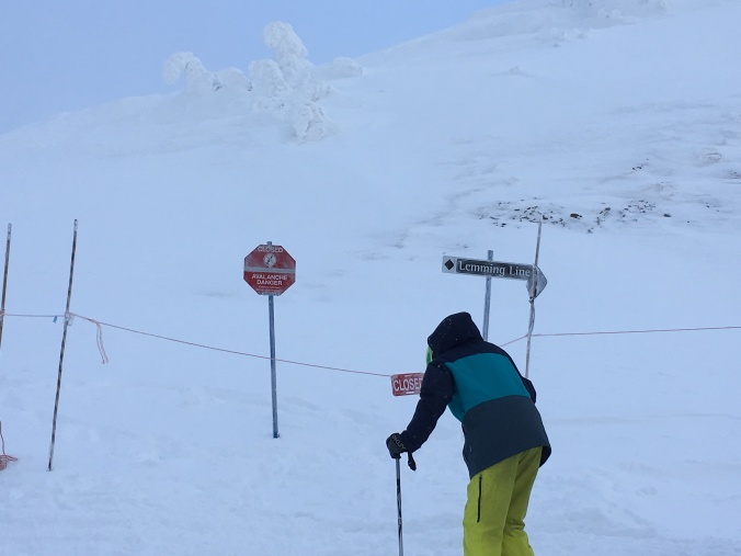 The aptly named route which takes you over to the North Bowls.