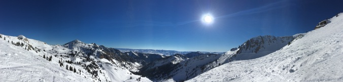 Looking over Mineral Basin
