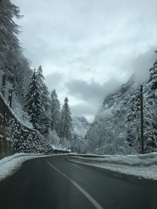 driving-back_beautiful